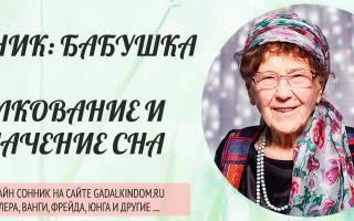 К чему снится бабушка живая сонник