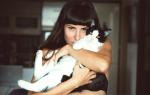 К чему снится кот во сне женщине сонник