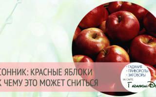 К чему снятся большие красные яблоки сонник