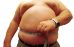 К чему снится толстый человек сонник