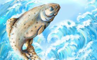К чему снится мертвая рыба женщине сонник
