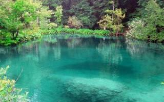 Видеть во сне озеро с чистой водой сонник