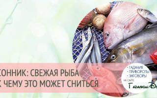 Видеть во сне свежую рыбу сонник