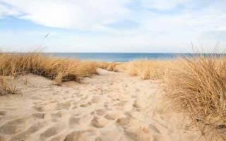 К чему снится много песка сонник