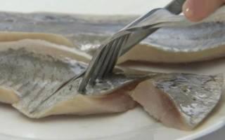 К чему снится угорь рыба сонник