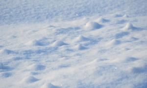 К чему снится снег сонник миллера