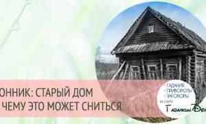 Сонник старый дом детства
