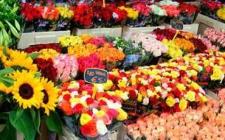 К чему снится покупать цветы живые сонник