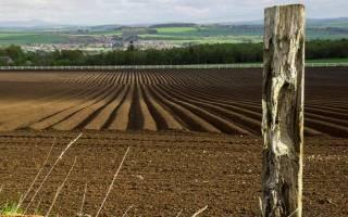 К чему снится черная земля в огороде сонник