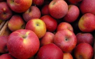 Есть во сне красные яблоки сонник