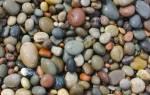 Сонник камень большой