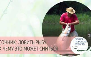 Ловить рыбу во сне сонник