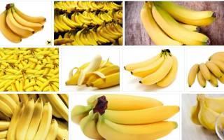 Видеть во сне бананы много сонник