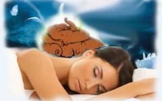 Видеть во сне какашки сонник