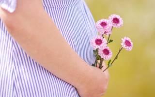 К чему снится беременная подруга девушке сонник
