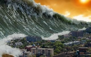 Увидеть во сне цунами сонник