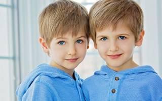 К чему снятся дети близнецы мальчики сонник