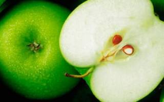 Видеть во сне яблоки зеленые сонник