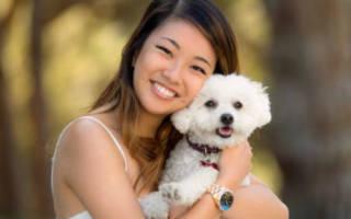 К чему снится обнимать собаку сонник