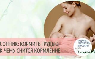 Во сне кормила ребенка грудью сонник