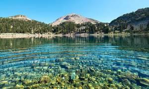 Сонник купаться в озере с людьми