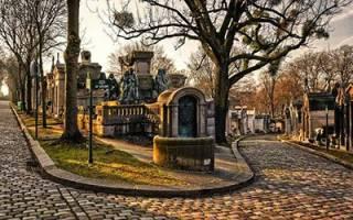 Видеть кладбище во сне что значит сонник
