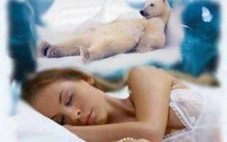 К чему снится убегать от медведя женщине сонник