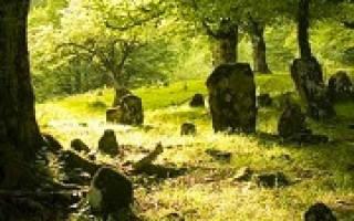 Сонник толкование кладбище