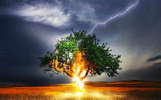 К чему снится молния ударила в человека сонник