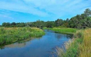 Сонник бурная река с чистой водой