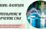 Сон фонтан с чистой водой сонник
