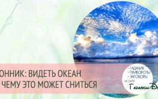 Видеть во сне океан сонник