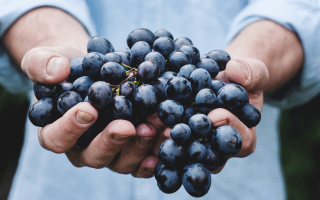 К чему снится виноград женщине по соннику