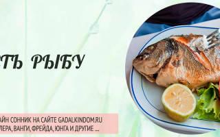 Сонник кушать рыбу во сне