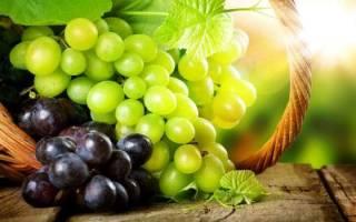 Есть во сне виноград зеленый сонник
