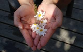 К чему снится покойник дарит цветы сонник