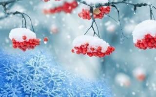 Видеть во сне белый снег чистый сонник
